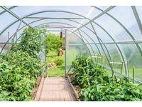 Seeking unused garden to rent for growing.
