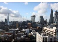 Stunning luxury one bedroom designer flat in Altitude Point, E1, porter, 25th floor roof terrace,