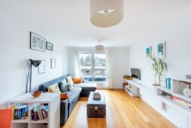 IMMACULATE ONE DOUBLE BEDROOM flat - Effra Parade, Brixton, London, SW2