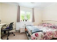 CHARMING 4 DOUBLE BED HOUSE NEXT TO THE RIVER - VIEWS OF CANARY WHARF - AVAILABLE JUNE - CALL ASAP