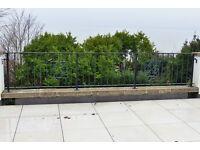 Reclaimed steel railings/balustrades x 2