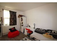NEW FLAT - PRIME LOCATION -ROOF TERRACE - 2 DOUBLE BEDROOMS - SE17 - AVAILABLE FROM SEPT