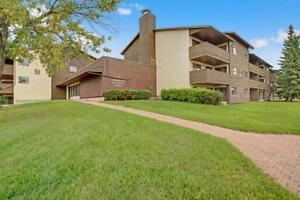 Last One! Three Bedroom Apartment With Exclusive Pool/Gym Access