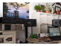 Alesis monitor one mkII passive loudspeakers