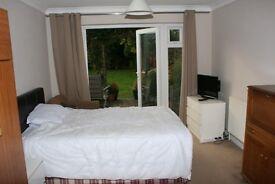 Large bed sitting room East Ewell , Epsom