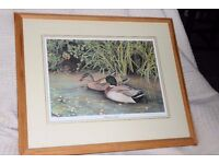 """Signed Limited Edition Print/Picture """"Mallard Ducks"""" by Michael N Oxenham,size 20.5 x 17 ins, Histon"""