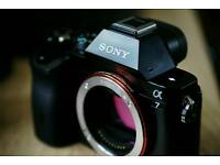 SONY ALPHA A7 mirrorless FULL FRAME digital camera.