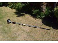 long reach hedge trimmer 2 stroke