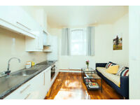 Bright, spacious and luxury one bedroomed apartment in the heart of Islington.