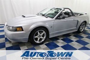 2004 Ford Mustang GT 40TH Anniversary Edition/LOW KM/LEATHER