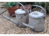 Vintage watering can planters