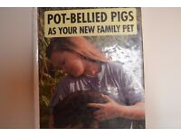 Book on Pot-Bellied pigs - your new family pet