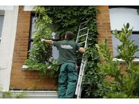Experienced and professional gardeners in Islington, London.