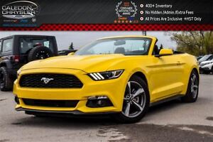 2016 Ford Mustang V6|Power Top|Backup Cam|Bluetooth|R-Start|Keyl