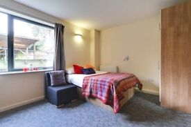 Fantastic Spacious Studio With Wifi in This Nice Residence Near Shops and Station.