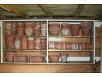 170 Terracotta pots of various sizes. £80 ono