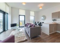 Brand New Superb 2 Bed 2 Bath Rental Penthouse Apartment - Luxury with a Bath Riverside Location