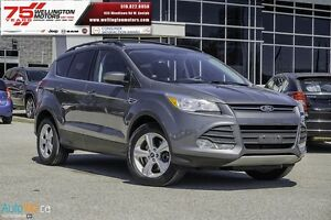 2013 Ford Escape SE      NO ACCIDENTS | INLC. WINTERS......