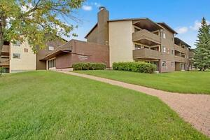 Great Price on a 3 Bedroom Apartment In A Family Building!