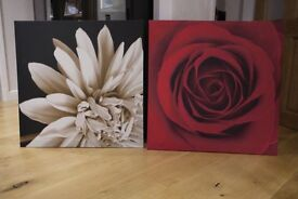 FOR SALE - 'IKEA' BOX CANVASS PRINTED FRAMES (GOOD COND)