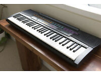 FOR SALE: Casio CTK 520L electronic keyboard