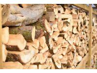 FIREWOOD LOGS AND KINDLING FOR WOOD BURNER,FIRE PIT & CHIMINEA.