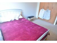 two double rooms to be rented before 30/08