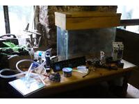 Tropical Aquarium and Accessories