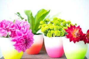 Bulk buy Fluro Ceramic Vases Marrickville Marrickville Area Preview