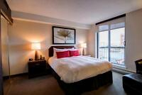 Bachelor Fully Furnished - Downtown Ottawa! All Inclusive!