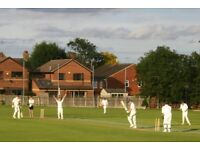 Cricketers Wanted - regular players Enfield, North London team. Friendly Sunday social cricket