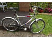 "mens salcano ILgaz hybrid mtb bike suspension seat 19"" frame commuter"