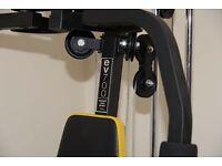 Everlast EV- 700 Home gym
