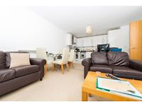 Stunning 2 bed 2 bath in THE SPHERE CANNING TOWN E16 ROYAL VICTORIA STAR LANE NEWHAM CANARY WHARF