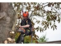 Tree Surgeon required at Cameron Landscapes Ltd.