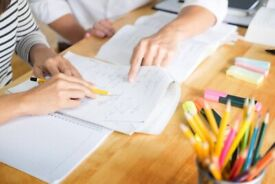 Experienced Economics and business tutor