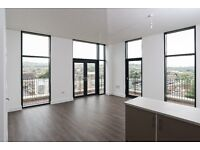 **NO AGENCY FEES** BRAND NEW 2 Bedroom PENTHOUSE Apartment in Riverside development AVAILABLE NOW