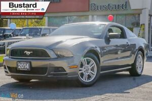 2014 Ford Mustang V6 | RARE MANUAL | LOW KM | ON SALE