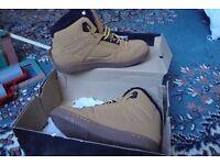 D & G boys ankle boots
