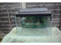 Fish Tank With Lid, Decorative Stones etc.