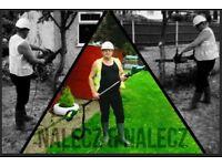 Professional Gardening Service - Hounslow