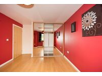 1 bedroom flat to rent - NO FEES