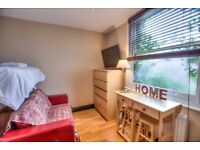 BEAUTIFUL STUDIO AVAILABLE FOR ONE MONTH! SPECIAL PRICE! CENTRAL LONDON!