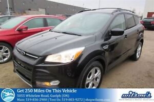 2014 Ford Escape SE 4X4 SUV! REAR CAMERA! SYNC BLUETOOTH! CRUISE