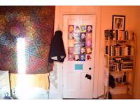 Double Room near City Centre 175£ pm