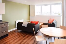 2 Bed Apartment for rent, brand new building, fully furnished