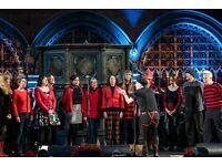 Punk Rock Choir!