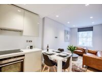 huge 2 bedrooms/2 bathrooms in central London~recently refurbished~double glazing windows~M. IN NOW~