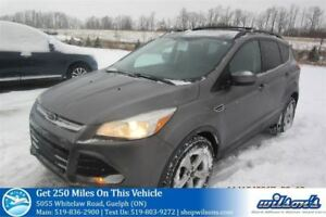 2014 Ford Escape SE NAVIGATION! REAR CAMERA! BLUETOOTH! CRUISE C