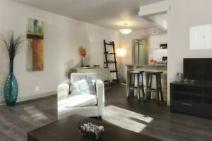 Grandview Apartments, One Bedroom Apartment for November 1